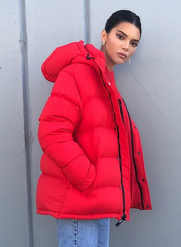 Kylie Jenner Aritzia Coat